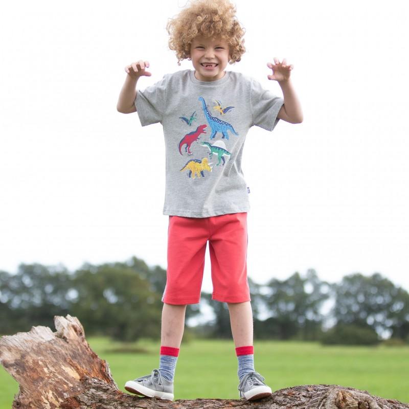 Kite Dinosaur Stomp T-Shirt